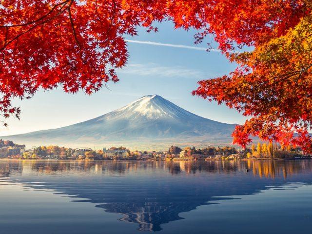 Экскурсия «Природные красоты Кавагутико!»