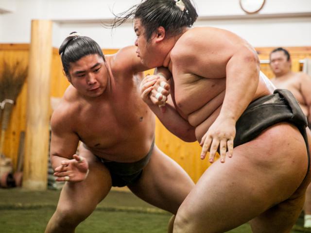 Посещение утренней тренировки борцов сумо и завтрак с сумоистами!